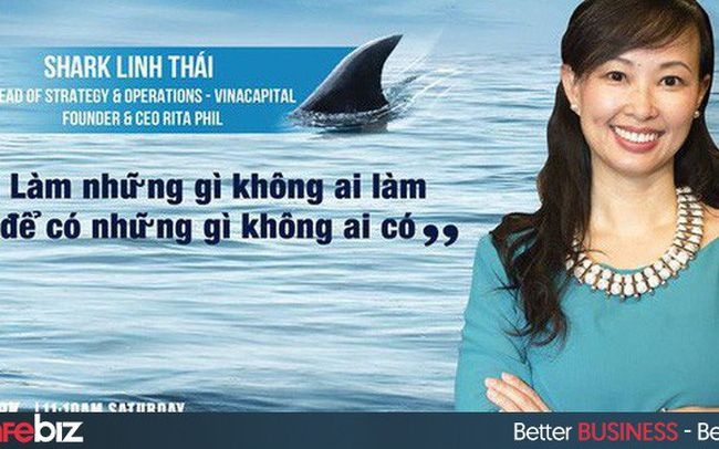 tieu-su-shark-linh (3)