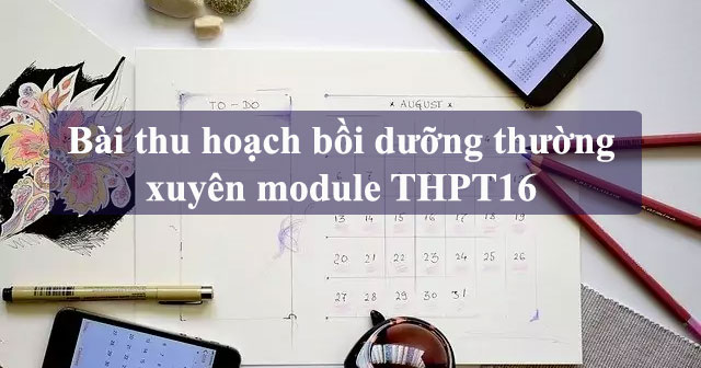 bai-thu-hoach-boi-duong-thuong-xuyen-module-16-tieu-hoc