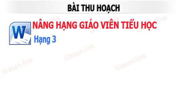 bai-thu-hoach-nang-hang-giao-vien-tieu-hoc-hang-III