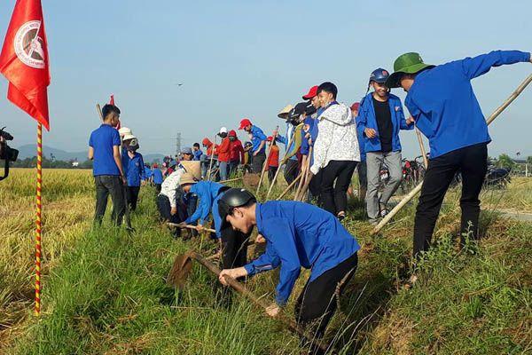 nhiệm vụ của đoàn thanh niên cộng sản HCM
