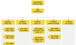 sơ đồ chức năng của công ty