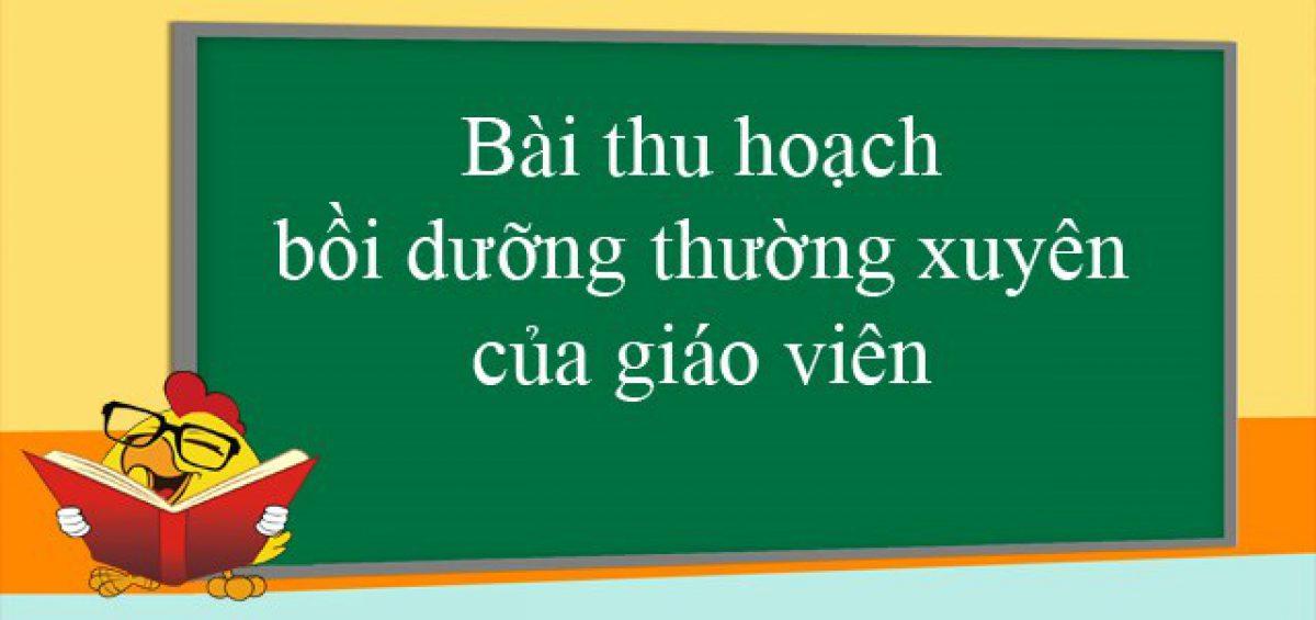 bai-thu-hoach-boi-duong-thuong-xuyen-tieu-hoc-module-45